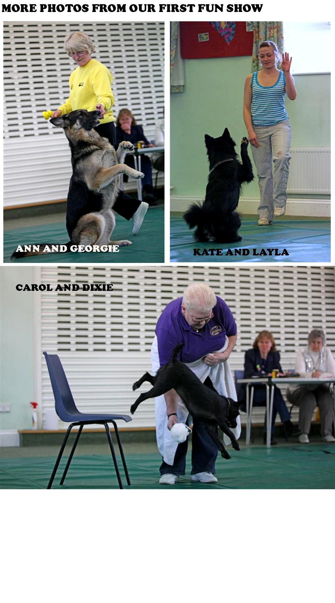 fun-dog-show-photos-picture-2