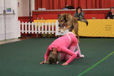 Vicky and Brad from Film Dog Dancing School